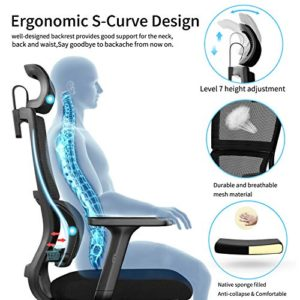 Ergonomic Office Chair With Upgraded Lumbar Support And Adjustable Armrest Headrest Desk Chair With Mesh High Back Home Office Desk Chair Computer Chair Rolling Chair 0 0