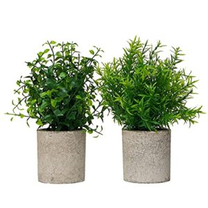 Modern Farmhouse Bathroom Decor Small Plants Decor Table Centerpieces Decorations For Dining Room Office Desk Kitchen Living Room Shelf Fake Plant Artificial Plant Flowers Faux House Indoor 2 Pack 0